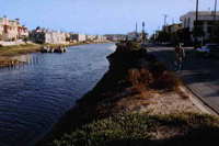 The Ballona Lagoon